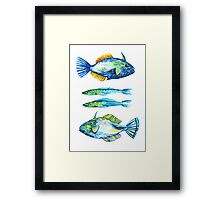 Cool blue and green fish under the sea Framed Print