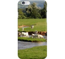 Landscape with cows (France) iPhone Case/Skin