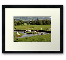 Landscape with cows (France) Framed Print