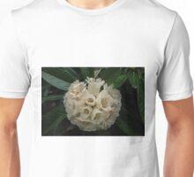 Cream Rhododendron Dalhousie tree CJ Dennis garden Toolangi Victoria 20160903 7431 Unisex T-Shirt