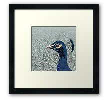 As Proud As A Peacock Framed Print