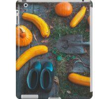 Harvest of local rural farmer. Halloween pumpkins. Village landscape. iPad Case/Skin