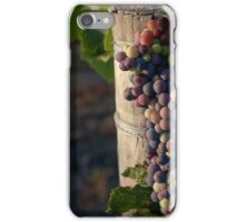 In the Vineyard iPhone Case/Skin