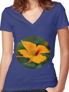 amarillo Women's Fitted V-Neck T-Shirt
