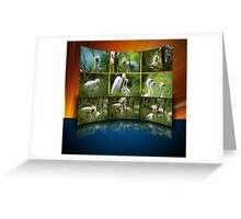 The wall of baby egrets Greeting Card