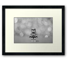 The Trooper Framed Print