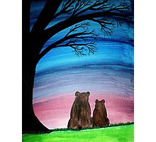 Two bears Photographic Print