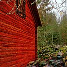 Swedish barn partial by globeboater