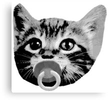 baby kitten with pacifier Canvas Print