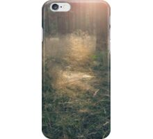 Forest in sun rays iPhone Case/Skin