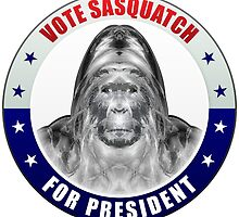 Sasquatch For President by morningdance