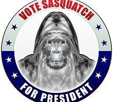 Sasquatch For President by morningdance