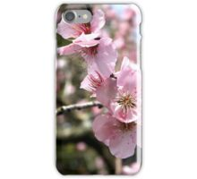 Blossom iPhone Case/Skin