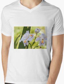 blue orchid Mens V-Neck T-Shirt