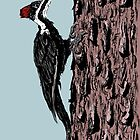 Pileated Woodpecker by Jared Manninen