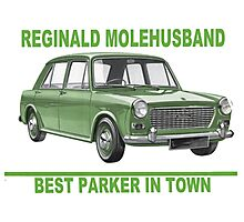 Reginald Molehusband - Best Parker in Town Photographic Print