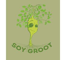 Soy Groot Photographic Print