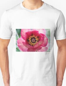 peony in spring Unisex T-Shirt