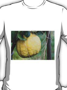 lemon in spring T-Shirt