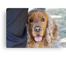 cute dog Canvas Print