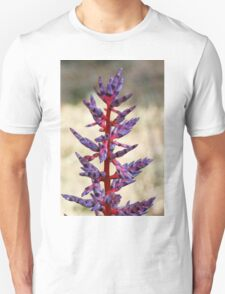 colored flowers in spring Unisex T-Shirt