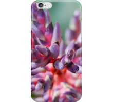 colored flowers in spring iPhone Case/Skin