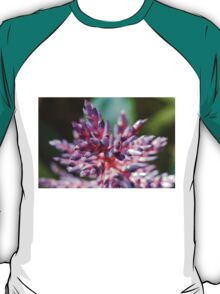 colored flowers in spring T-Shirt
