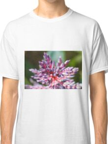 colored flowers in spring Classic T-Shirt