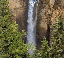 Tower Falls  by John  Kapusta