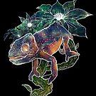 Cosmic Chameleon by Liviu Matei