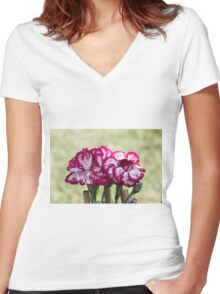 colored flowers in spring Women's Fitted V-Neck T-Shirt