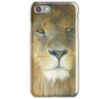 Lion Portrait, The king of the Jungle iPhone Case/Skin