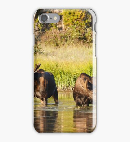 Two Moose iPhone Case/Skin