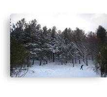 Snowstory n°1 Canvas Print