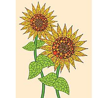 Colorful Sunflowers Photographic Print
