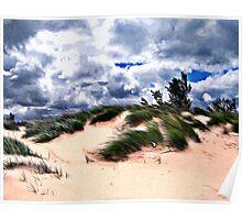 Sandy Beach Dune Grass Poster