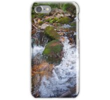 San Juan's n creeks iPhone Case/Skin