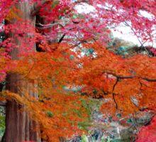 Autumn Colours 5 Sticker