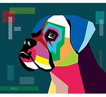 boxer  Photographic Print