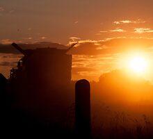 Cuz I got a brand new combine harvester... by Mudgers