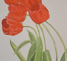 Tulips by TawnyaVanterve