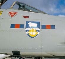 Falklands Crest on 23 Sqn Phantom by Colin Smedley