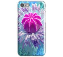 Poppy near St Ives iPhone Case/Skin