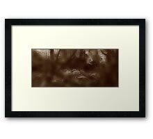 The Tarkine Rainforest after heavy rainfalls......... Framed Print