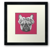 French Bulldog with roses Framed Print