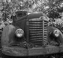 Abandoned Fire Truck by Russell Fry