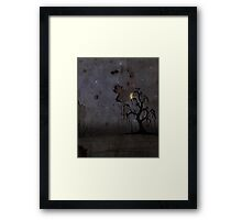 Red Star Willow Framed Print