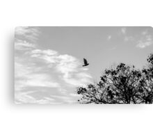 Free like the wind  Canvas Print