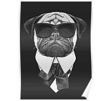 Pug In Black Poster