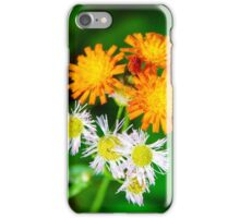Cottage Wildflowers iPhone Case/Skin